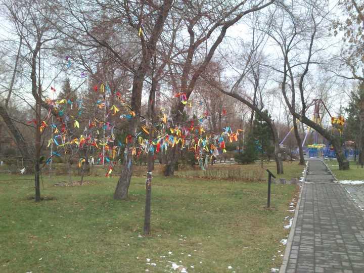 Park_imeni_kirova_2012_2