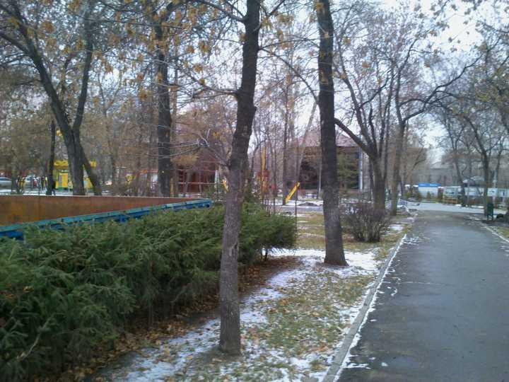 Park_imeni_kirova_2012_5